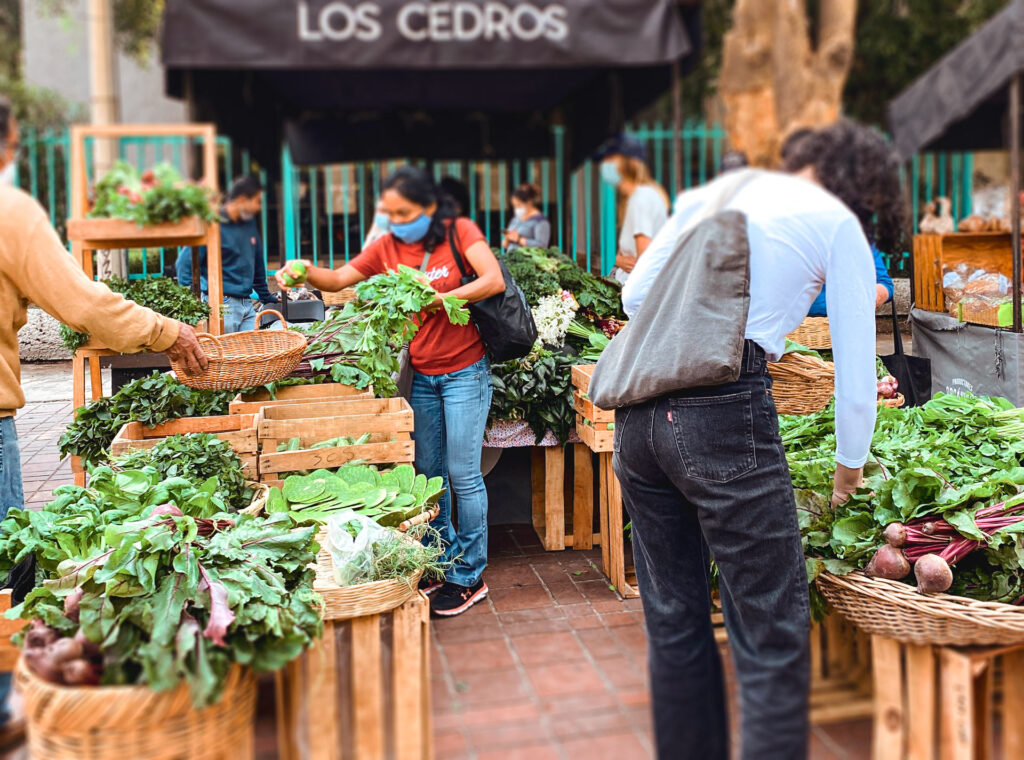 farmers-market-with-groceries-bag---Zero-Waste-Hacks-for-travelers-and-digital-nomads